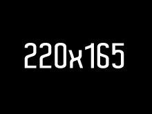 220_16560