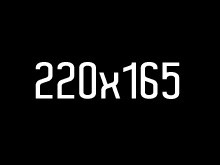 220_16561